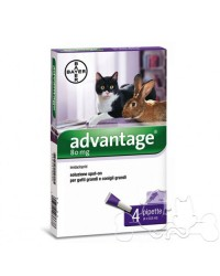 Advantage Spot On oltre 4 kg Antiparassitario per Gatti