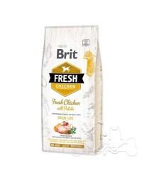 Brit Fresh Cane Adult Pollo e Patate