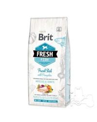 Brit Fresh Cane Adult Large Pesce e Zucca
