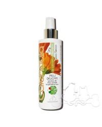 Officinalis shampoo secco alla Calendula