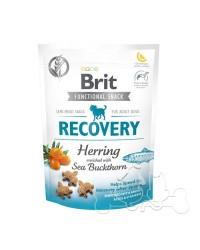 Brit Recovery Snack Funzionale per Cani