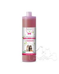 Derbe Detergente Igienizzante Casa al Melograno