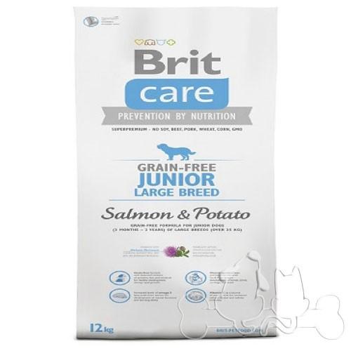 Brit Care Cane Junior Large Salmone e Patate