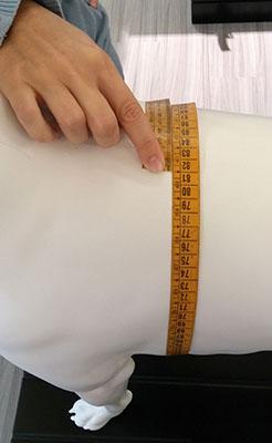 misura torace cane